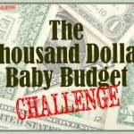 Take the thousand dollar baby budget challenge