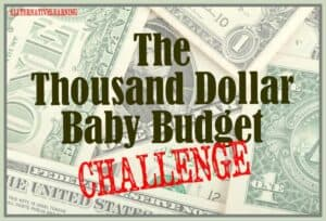 Take the thousand dollar baby budget challenge