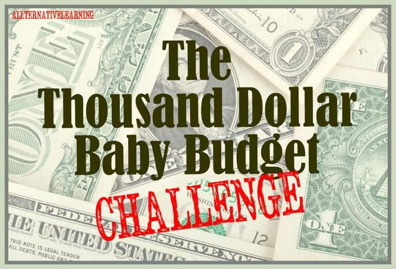 Start Up Budget MGT 465 Week 4 - Course Hero