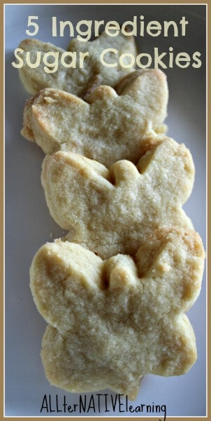 5 ingredient sugar cookie recipe