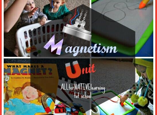 Magnetism Unit ALLterNATIVElearning.com Tot School