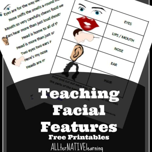 teaching facial features free printables