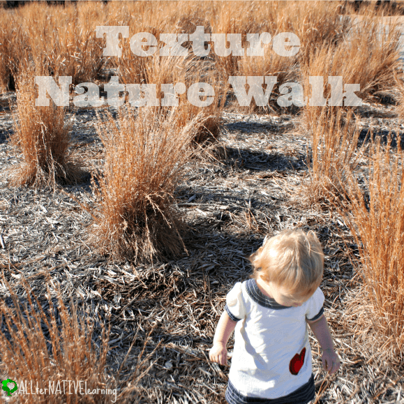 sensory exploration - texture nature walk