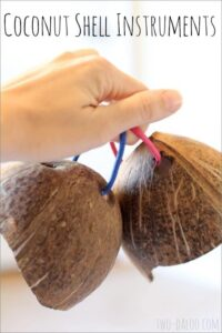 """Coconut Shell """"Castanets"""""""