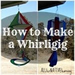 Whirligig spinning in the Wind | How to make one ALLterNATIVElearning.com