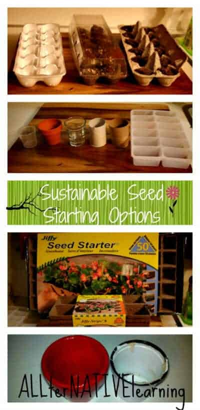 Sustainable Seed Staring Options