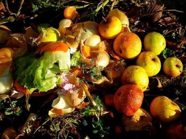 Organic Composting Materials