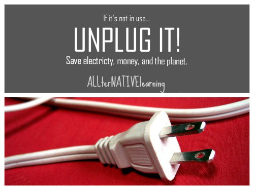 unplug for energy conservation