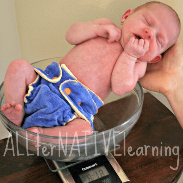 Weighing new baby in a bowl on a scale {wearing a cloth diaper}