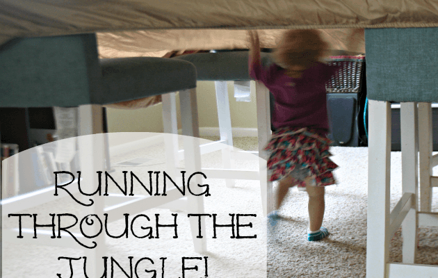 Exploring the Canopy and Running Through the Jungle