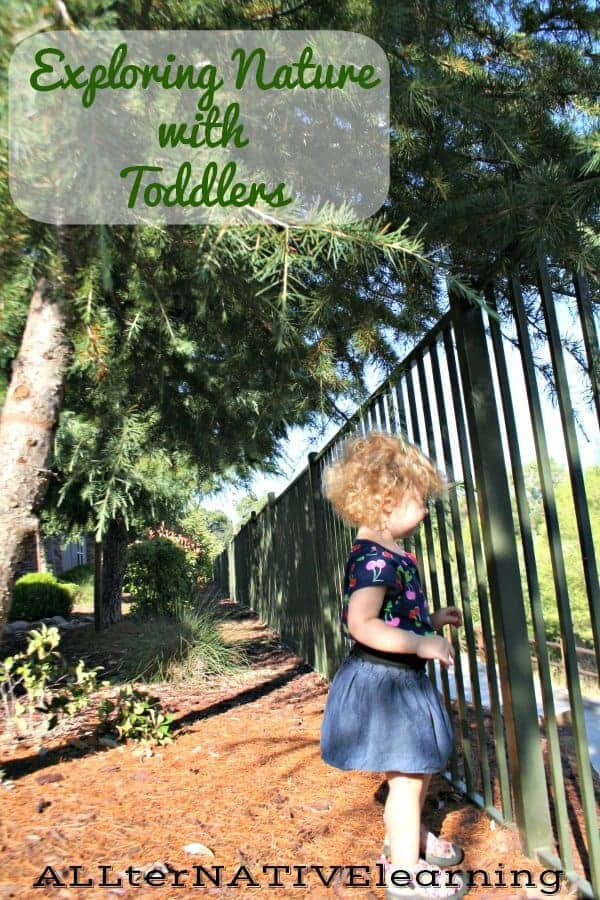 From nature walks and leaf collections to picnics and gardening - The Basics of Exploring Nature in tot School | ALLterNATIVElearning