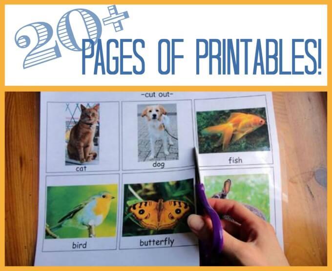 Free tot school printables