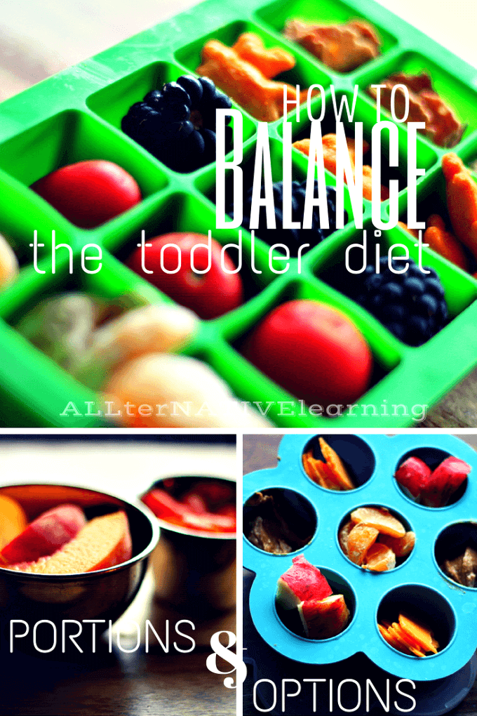 Healthy snack ideas for toddlers and how to balance their diets   ALLterNATIVElearning