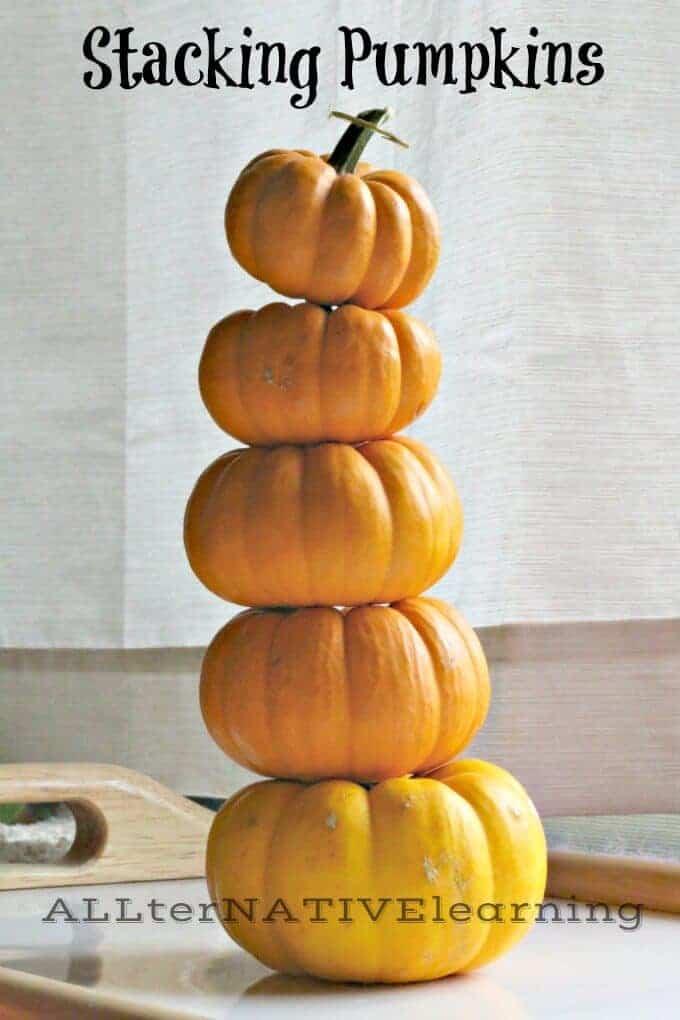 Stacking mini Pumpkins like the Montessori Pink Tower | ALLterNATIVElearning.com