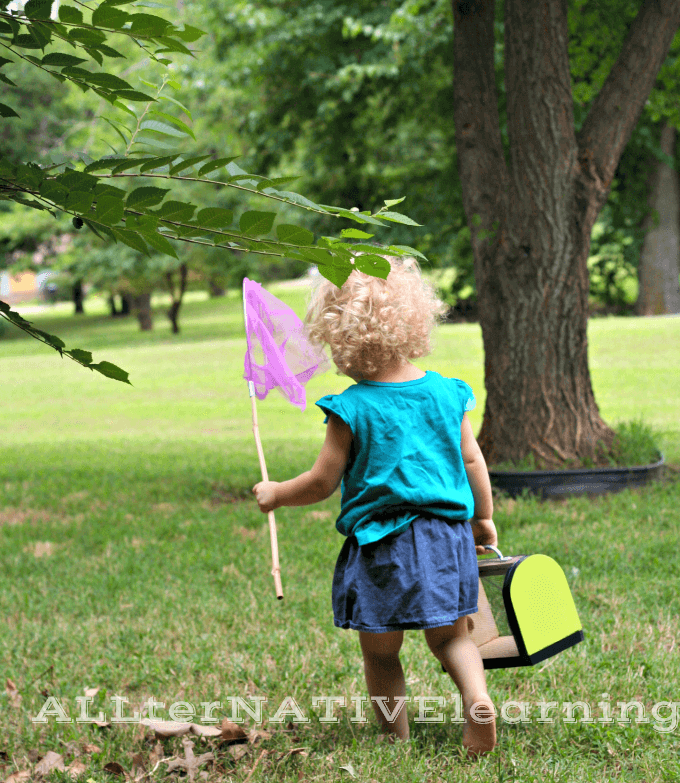 Celebrate summer by going bug hunting with your toddler | ALLterNATIVElearning