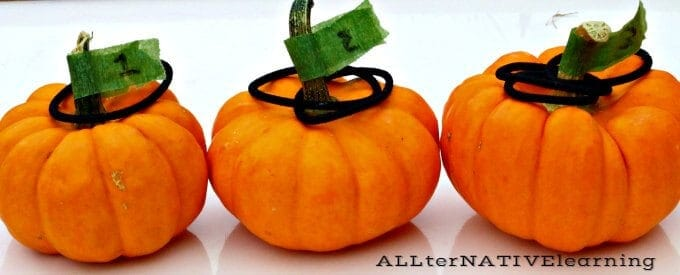 Miniature pumpkin number matching game | ALLterNATIVElearning