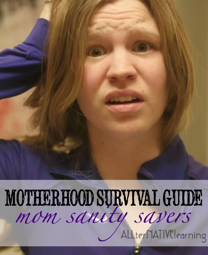 """10 mom sanity savers to your surviving motherhood """"kit"""""""