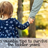 Troubleshooting Toddlerhood and surviving the early years of raising kids and confronting the parenting struggles.