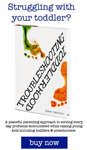 troubleshooting toddlerhood book and ebook