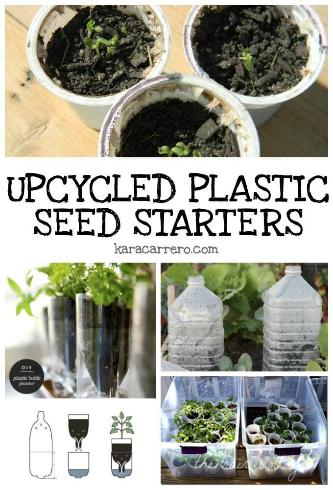 How to epicycle plastic containers for your garden and for seed starting