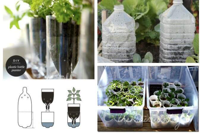 Plastic Upcycle Seed Starters