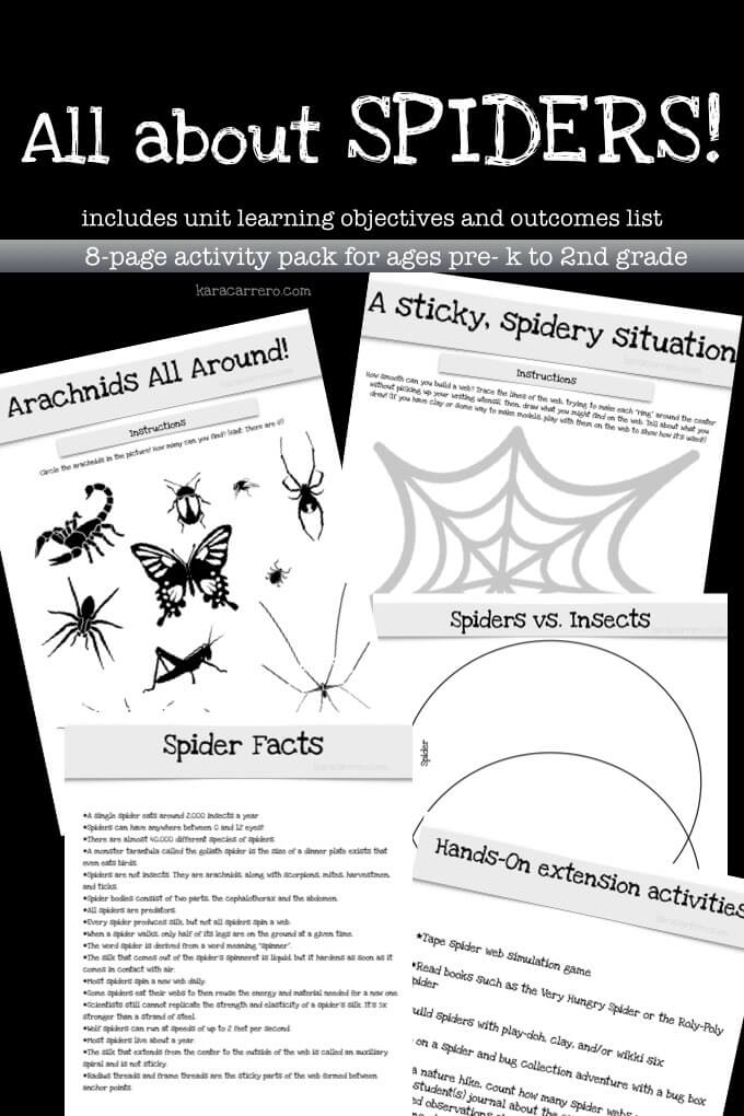 Spider and arachnid free printable unit theme pack.