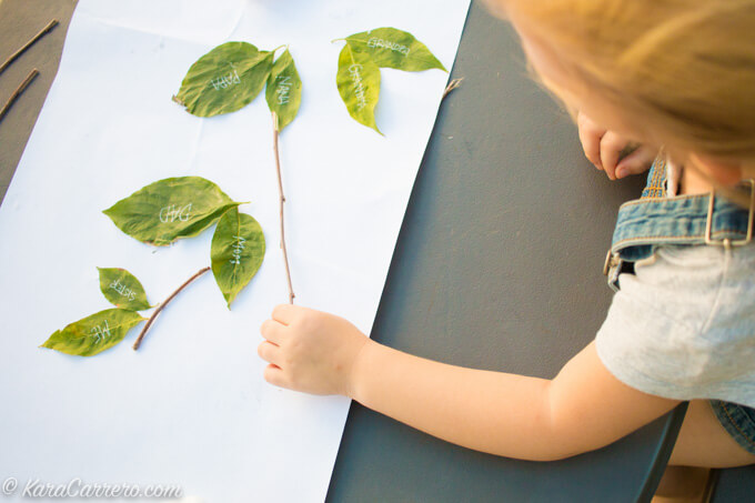 easy family tree with sticks and leaves for kindergarten