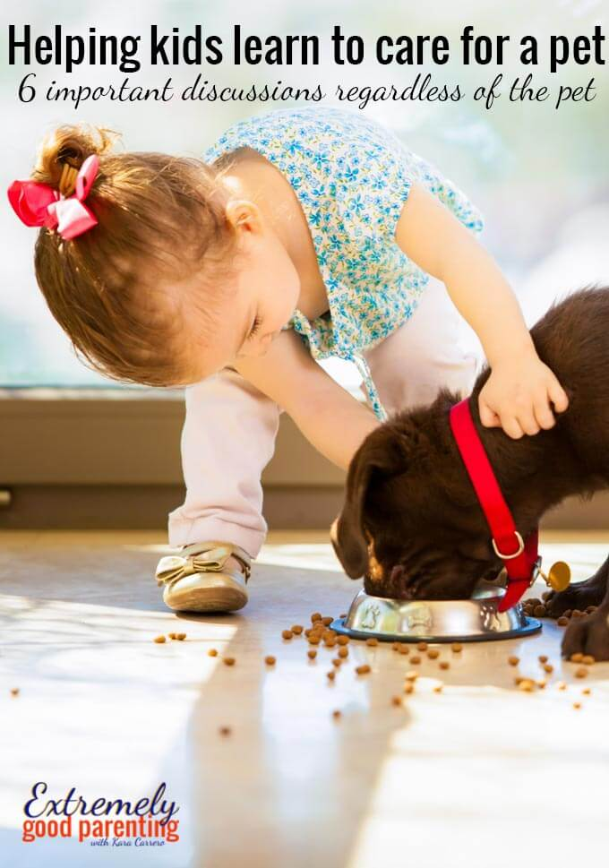 6 discussions to teach kids learn to care for a pet