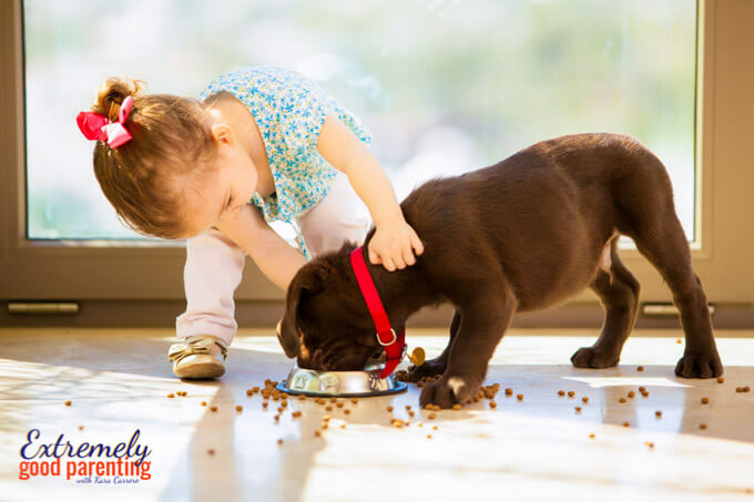 How to help young kids learn to care for a pet