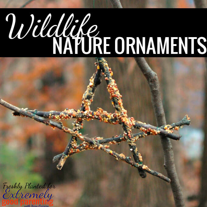 Wildlife nature ornaments for kids to make for the birds.
