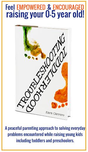 troubleshooting toddlerhood book