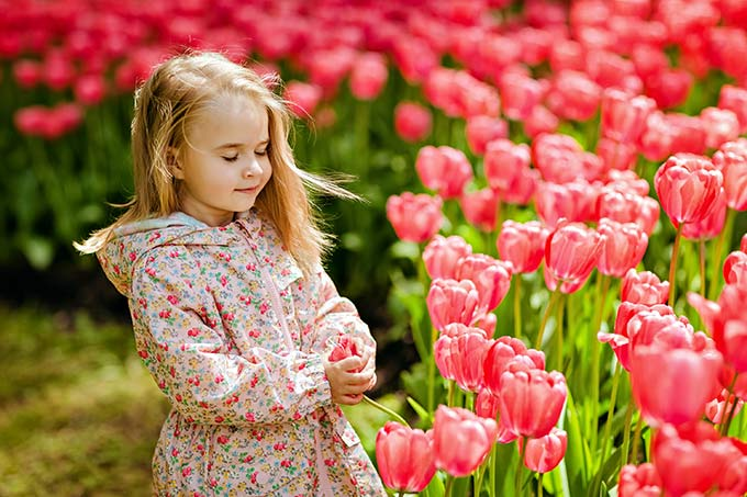 Spring has arrived! How to create a vibrant flowerbed with your kids